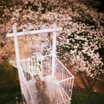 Sakuramadelica2012-1