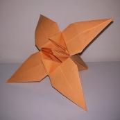 Fotografía: lirio de origami