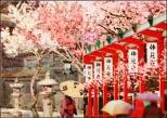 Imagen destacada: Tôkyô, Japón